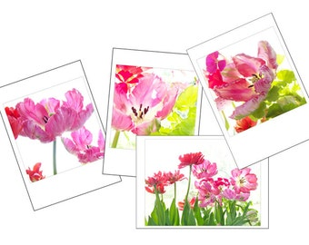 Parrot Tulip Photo Cards, Gift for Gardener,  Four Blank Cards, Pink  Flower Photographs Card Set, Greeting Card Set
