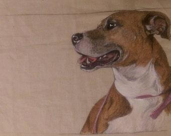 Marker & Paint on Fabric Commissioned Pet Portrait