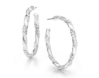 Doulble Spiral Hoop Earrings