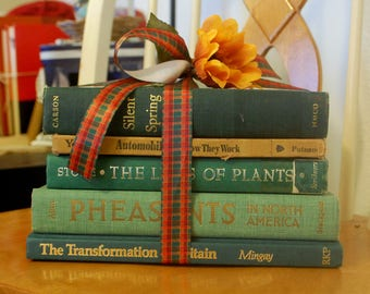 Green Decorative Book Stack