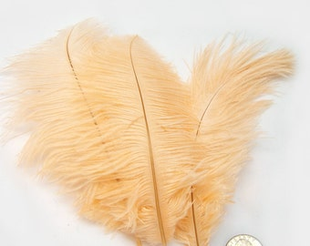 PEACH Ostrich Feather Drab (6-8 inches, 3 package option) feather for hat,fascinator,hat,corset,dresses,bouquets, costume,fans