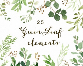Watercolor Green Leaf Elements/Greenery/Eucalyptus/Wild Leaf/Spring/Green
