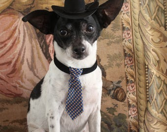 Pet groom  costume hat and tie