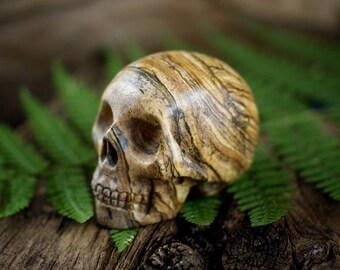 Gemstone Skull, Crystal Skull, Picture Jasper, Jasper Skull, Meditation, Palmstone, Carved Skull
