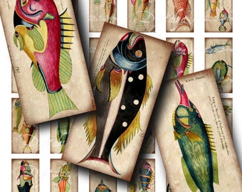 Weird Colorful Fishes (1) Digital Collage Sheet - 16th century Hand colored fishes - Dominos 1x2 inch or Bamboo size - See Promo Offer