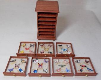 Dollhouse Handmade Miniature Jarrah Wood Butterfly Display Unit