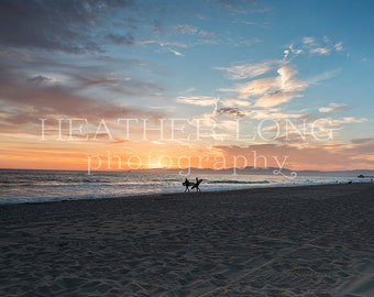 Surfing California - Nature Photography, Wall Art Prints, Fine art photography print, Limited Edition