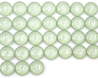 31 pretty Moss Green Calendar Number Glass Magnets - NEW!