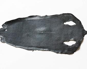 Black Stingray skin