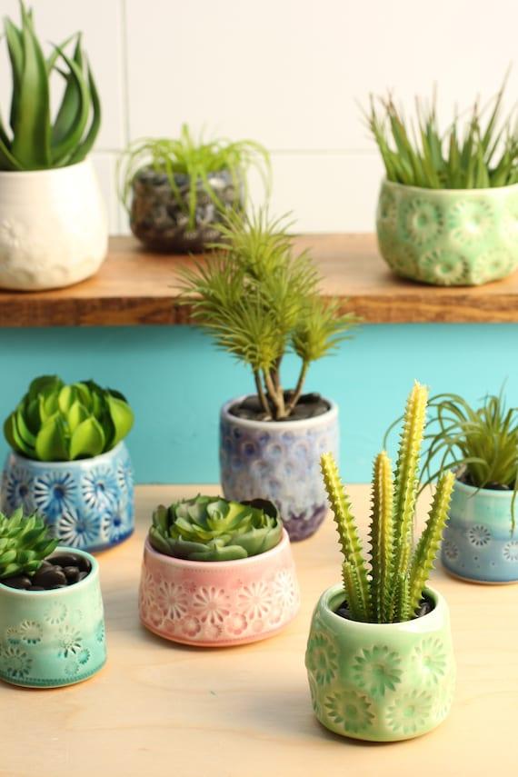 green succulent planter // cactus plant pot // succulent pot // small ceramic pot // succulent gift // air plant container