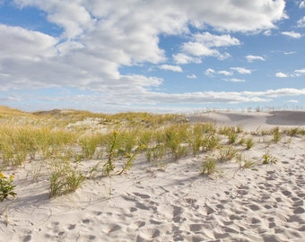 Beach Decor, Coastal Wall Print, Sand Dune Photo, Coastal Photo Wall Art, Dune Grass Print, Seascape Decor, Island Beach, Beach Grass Print