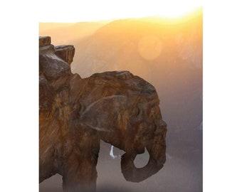 Elephant Mountain Photomanipulation Canvas