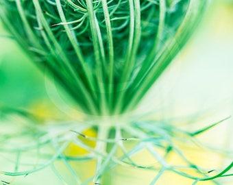En téléchargement numérique de fleurs sauvages, Decor imprimable, Wildflower verticale Art, Photo de fleurs sauvages, bureau Wall Art, Photo imprimable, Clipart fleur