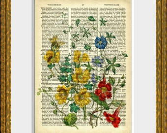 FLOWER BOUQUET 5 recycled book page print - an upcycled antique 1800's dictionary page with an antique flower illustration - wall art