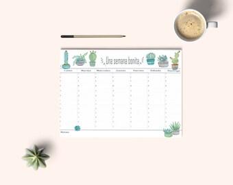 Weekly planner, desk planner, organize tasks, calendar, weekly plan, pretty stationery, gift idea, catus weekly planner. Watercolor planner
