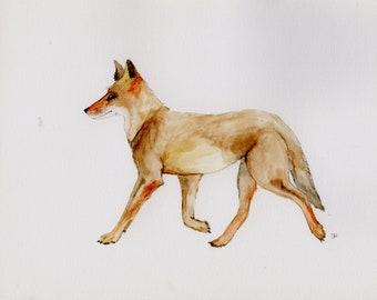 Coyote Trot, Original Watercolor Painting