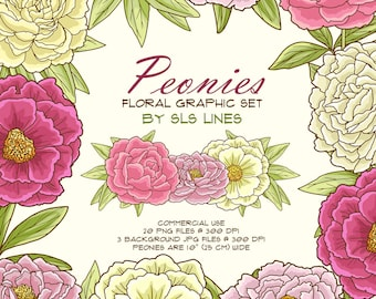 Peonies flower clipart pink