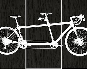 XXL 4' x 6'  Tandem Bicycle