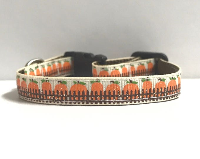 """3/8"""" Behind the fence pumpkins collar"""