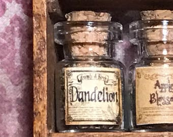 "Jar of DANDELION  for a dollhouse, witch's herbs and poisons, dollhouse size, in a glass jar 1:12 1/12 1"", under 1"" tall, (simulated)"