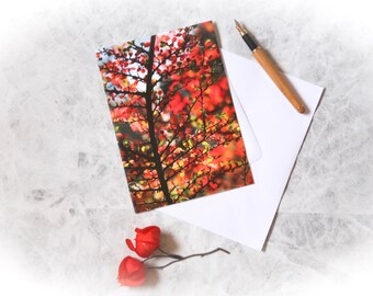 Nature photo card   greetings card   photographic card   photo print   nature photo   for her   for nature lover   autumn leaves   cotoneast