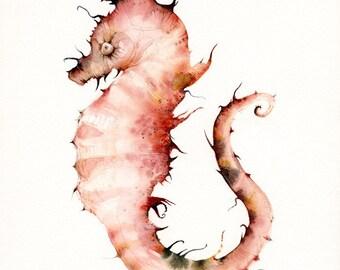 Coral Seahorse- seahorse print- nautical decor