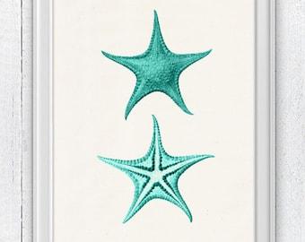 Starfish in aqua color seaside print - Aqua Print  Sea foam sea life print -Marine  sea life illustration A4 print SAS069