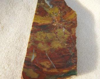 Jasper Agate Slab - Wonderful Colors - Red Yellow White Patterns by JewelryArtistry - SL42