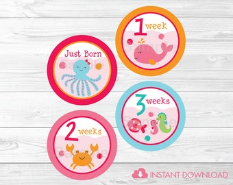 Pink Under the Sea Monthly Milestone Stickers /  Printable Onesie Stickers / Iron Ons / Instant Download A192