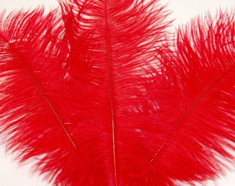 "2 PCs Ostrich Drabs 8-14"" Plume Feathers BLOOD RED"