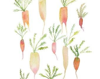Pastel carrot original watercolor painting, Botanical garden vegetable art, Garden vegetable painting, Carrot painting, Kitchen art, Food