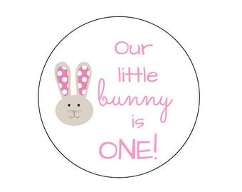 20 Girl Bunny Stickers, Thanks for Coming, Bunny Labels, Easter Theme, First Birthday, Easter Favors, Easter Tags, Birthday Labels, Stickers