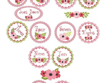 Baby Monthly  Iron On Heat Transfers - Pink  Girly Flower Plus Just Born  No. 117