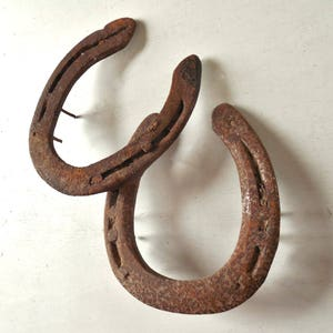 Old Lucky Horseshoe & Nails ~ Barn Door and Wall Art /item#0625
