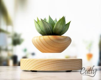 Succulent Planter, Modern Planter, Hanging Planter, Levitating Planter in mid-air, bonsai pot, air plant unique gift for her or gift for him