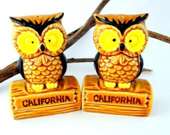Retro Souvenir Owl Salt and Pepper Shakers from California