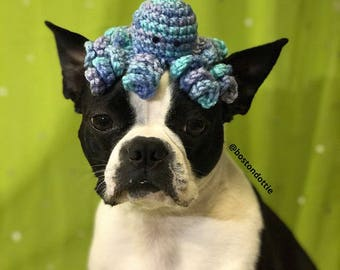 Cat Hat - Octopus Hat - Small Dog Hat