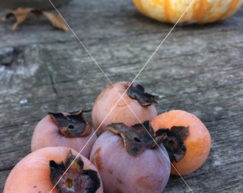 Pumpkin and Persimmons Styled Stock Photography