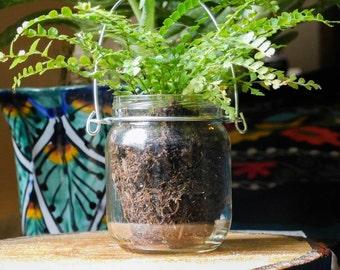 Set of 3 Mini Jar Greenery Planter Lantern Candle Holder Hanging Vase Indoor Outdoor Lighting