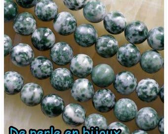 10 PCs - Pearl Jasper 8mm grey white red semi precious 8 mm bead