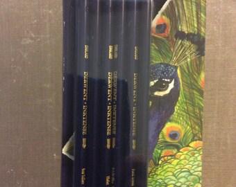 Derwint 6 Inktense Pencils