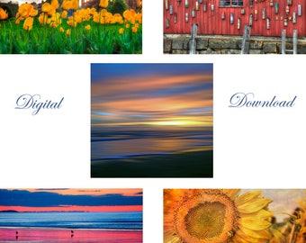 Digital download of 5 Images