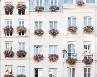 Paris Photograph - Flower Boxes in Saint Germain, Travel Photography, Large Wall Art, French Home Decor, Gallery Wall, Paris Fine Art Print