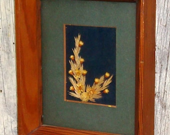 Framed Picture Dried Flowers