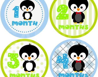 FREE GIFT Monthly Photo Stickers Baby Month Stickers Boy Monthly Stickers Month Stickers Monthly Photo Sticker Milestone Stickers Penguin