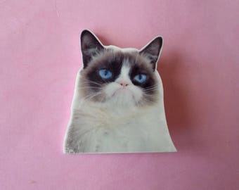 Brooch cat Grumpy cat ♥ ♥