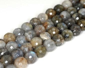 10mm Labradorite Gemstone Faceted Round Loose Beads 7.5 inch Half Strand (90142555-B74)