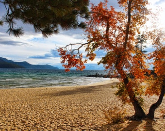 Colorful Tahoe, Sand Harbor, Mountains, Trees, Fall Foliage, Colorful, Nature, Sand, Beach, Lake Tahoe, Nevada