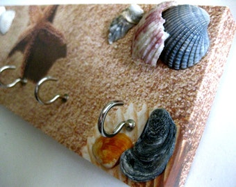 "Jewelry Holder and Key Rack  - ""Seashell"" - Sandy, beach, browns, tans, beige, seashells, starfish, sealife"