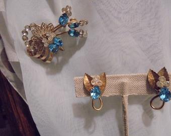 Blue White Rhinestone  Retro Pin/Earrings
